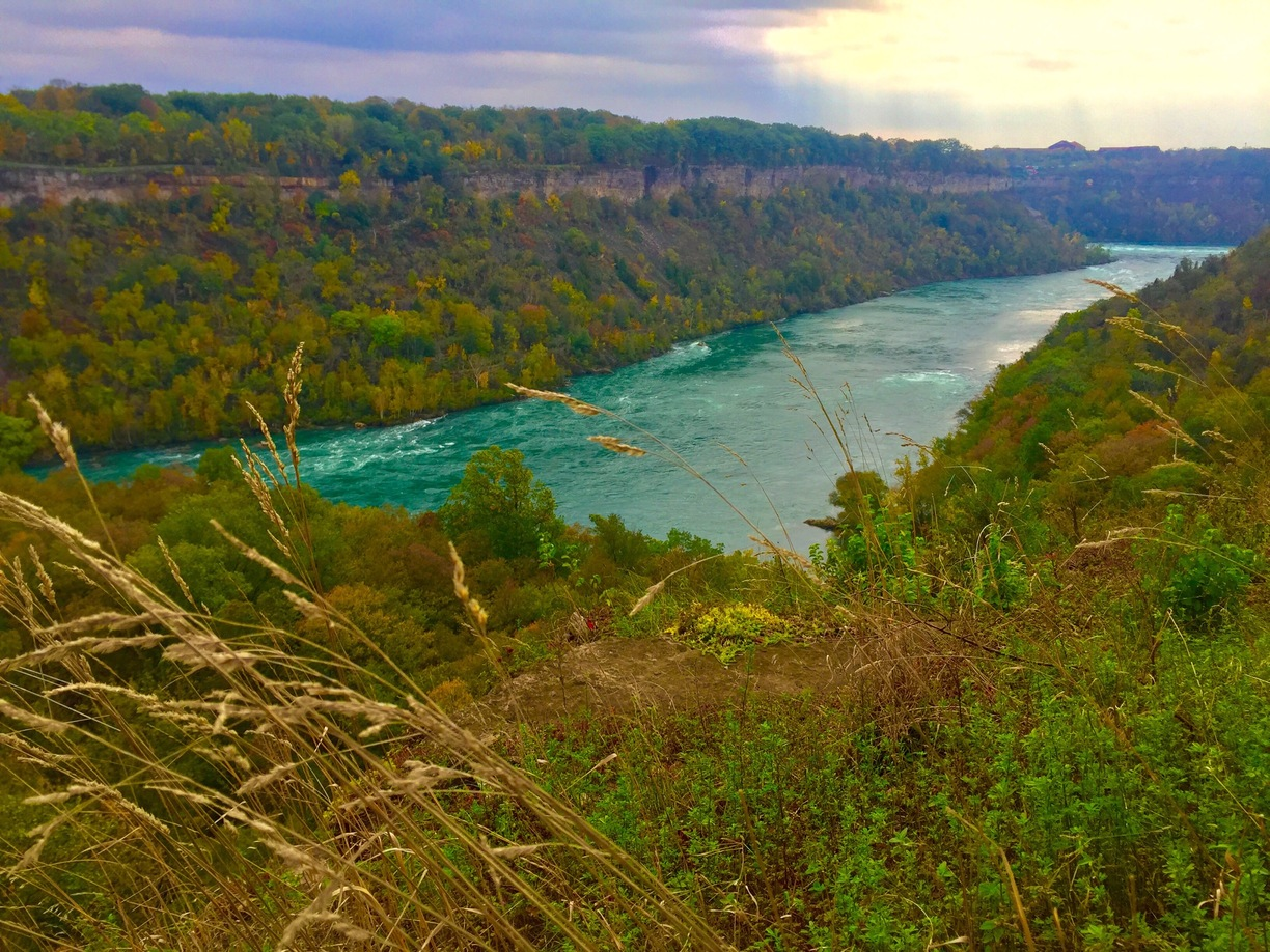 Niagara Glen Nature Reserve
